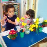 chigwell-daffodils